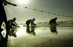 Fishermen in Gaza. Photo: Eman Mohammed